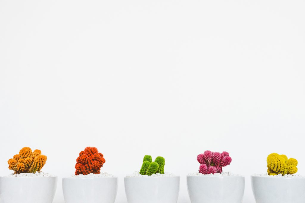 How to create diversity in your business